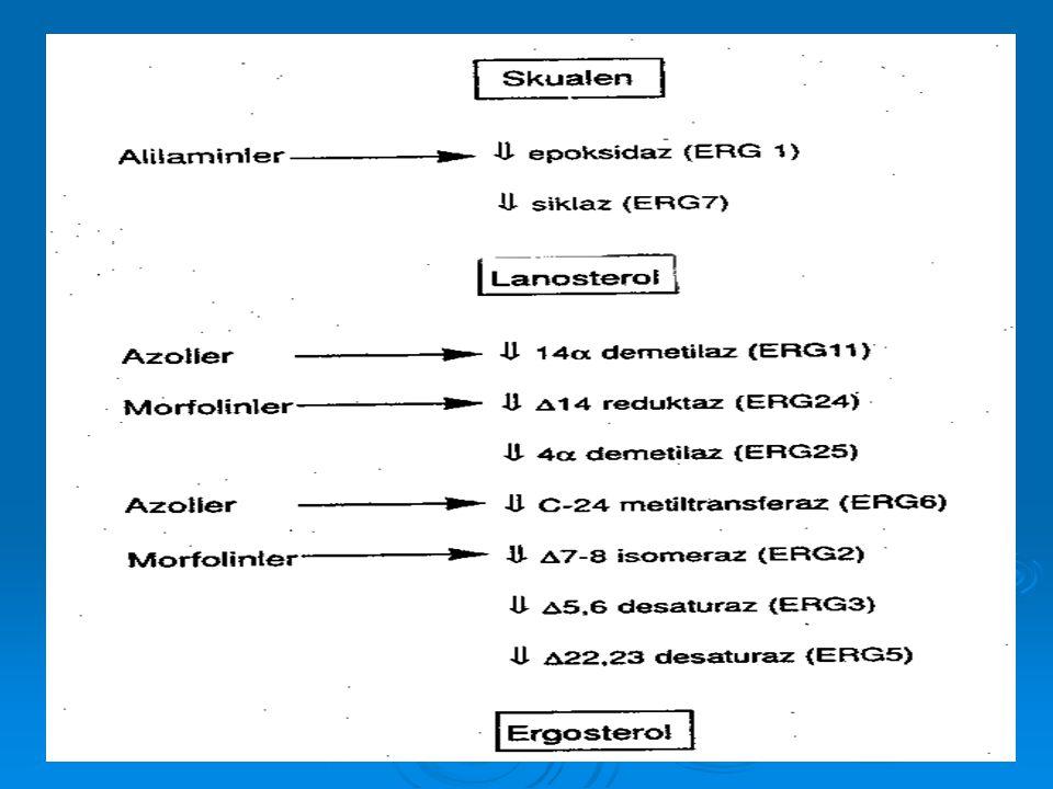 KASPOFUNGİN  Aminoasit yapısında hekzamer, semisentetik, oral emilimi düşük, suda eriyebilen, geniş spektrumlu yeni bir antifungal  Enjeksiyon yerinde kızarıklık, ateş, kızarma, bulantı, kusma  Mukozal kandidozda ve özefagial kandidozda** flukonazole (161 vaka %81-85) ve amfoterisin B'ye*** (%89-%63) eşit  71 amfoterisin B'ye dirençli 12 amfoterisin B kontrendike olguda 12 amfoterisin B kontrendike olguda %45 tam ya da kısmi yanıt**** %45 tam ya da kısmi yanıt**** Lancet Infectious Diseases, 2002, 2:345 **Am.