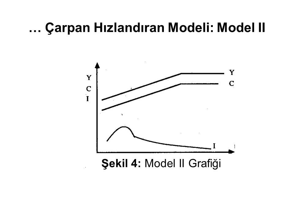 … Çarpan Hızlandıran Modeli: Model II Şekil 4: Model II Grafiği