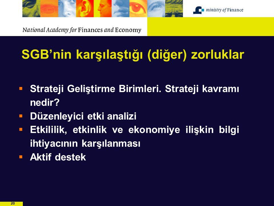 20 SGB'nin karşılaştığı (diğer) zorluklar  Strateji Geliştirme Birimleri. Strateji kavramı nedir?  Düzenleyici etki analizi  Etkililik, etkinlik ve