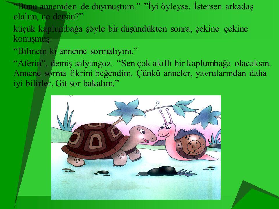 """ """"Öyleyse bana kulak ver küçük kaplumbağa. Ben çok yaş bir salyangozum. Bütün bu çevreyi gezip gördüm. Ne kaplumbağalar, ne de salyangozlar kendi kab"""