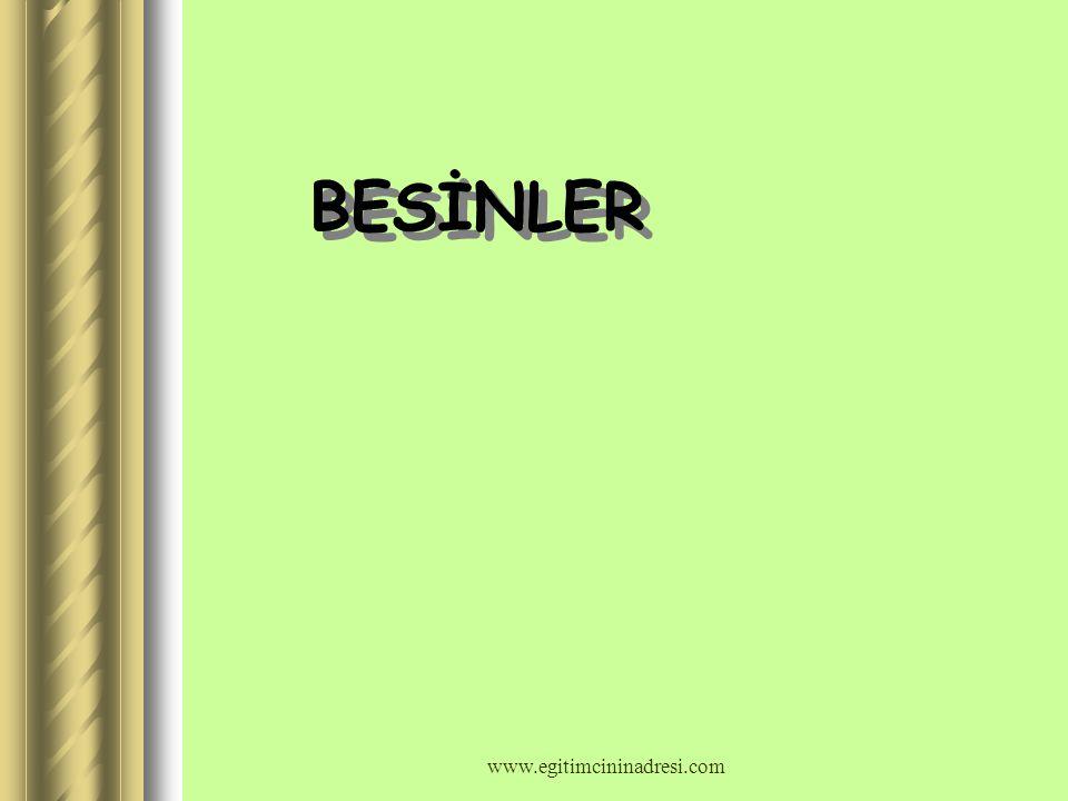 1-) BESİNLER 2-) SİNDİRİM ORGANLARI 3-) SİNDİRİM ORGANLARININ SAĞLIĞI www.egitimcininadresi.com