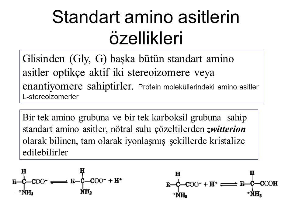 Standart amino asitlerin özellikleri Glisinden (Gly, G) başka bütün standart amino asitler optikçe aktif iki stereoizomere veya enantiyomere sahiptirl