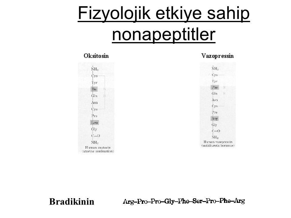 Fizyolojik etkiye sahip nonapeptitler Bradikinin