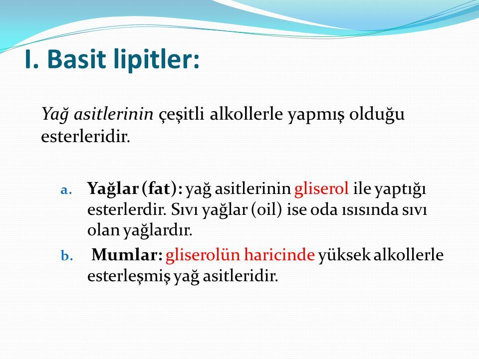 Yapılarına göre lipidler: Basit lipidler Bileşik lipidler Türev lipidler