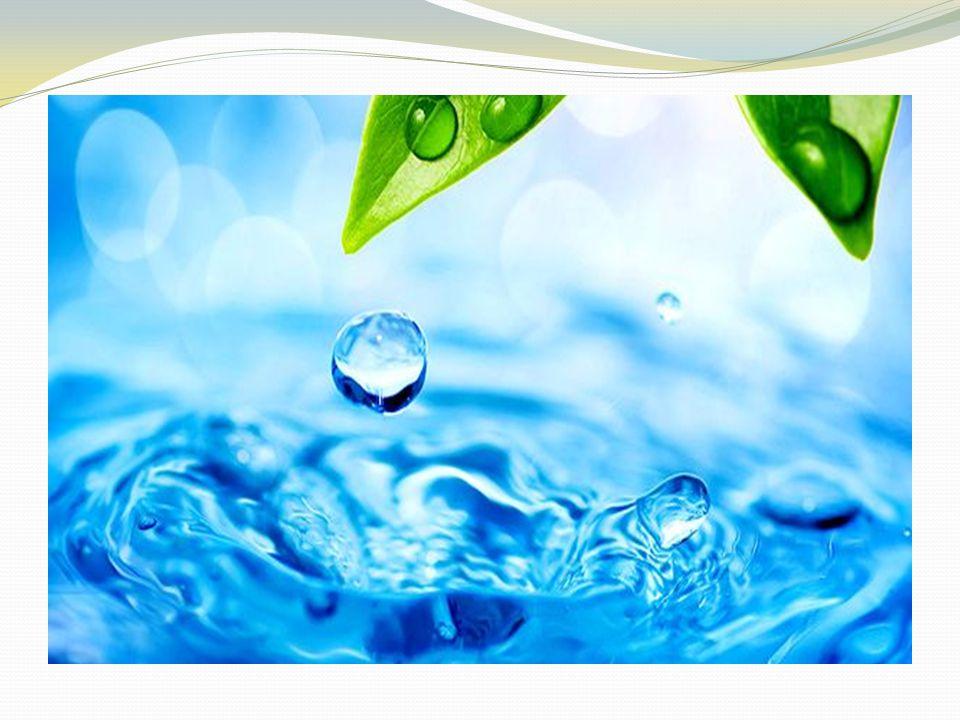 SU Kandaki su oranı düştüğünde, susuzluk hissederiz.Bu anda kandaki tuz konsantrasyonu yükselir. Tuz seviyesindeki yükseklik hücrelerden kan dolaşımın