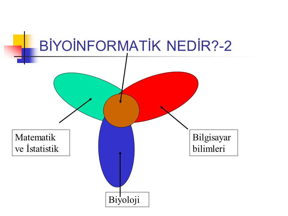 BİYOİNFORMATİK NEDİR?-2 Bilgisayar bilimleri Matematik ve İstatistik Biyoloji
