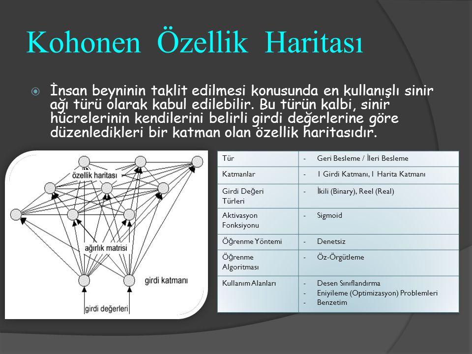 Kohonen Özellik Haritası  İnsan beyninin taklit edilmesi konusunda en kullanışlı sinir ağı türü olarak kabul edilebilir. Bu türün kalbi, sinir hücrel