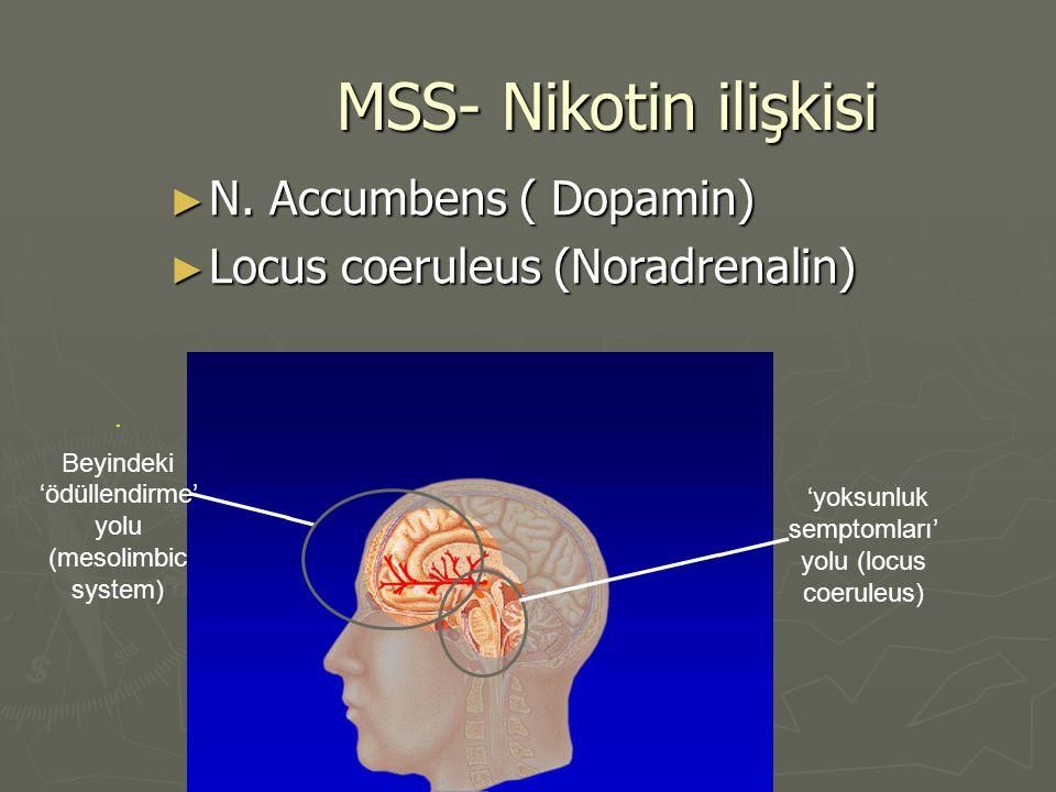 MSS- Nikotin ilişkisi ► N. Accumbens ( Dopamin) ► Locus coeruleus (Noradrenalin). Beyindeki 'ödüllendirme' yolu (mesolimbic system) 'yoksunluk semptom