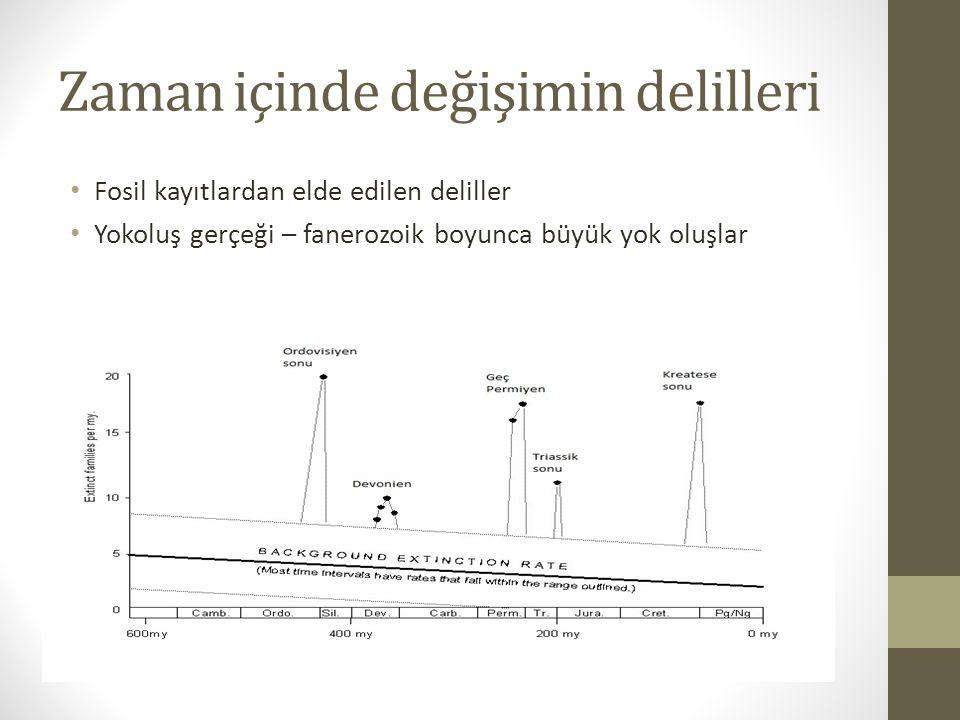 Zaman içinde değişimin delilleri 2.Fosil kayıtlardan elde edilen deliller b.
