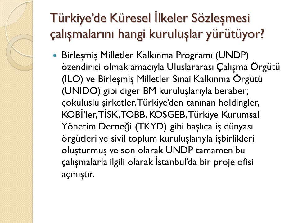 Türkiye'de Küresel İ lkeler Sözleşmesi çalışmalarını hangi kuruluşlar yürütüyor? Birleşmiş Milletler Kalkınma Programı (UNDP) özendirici olmak amacıyl