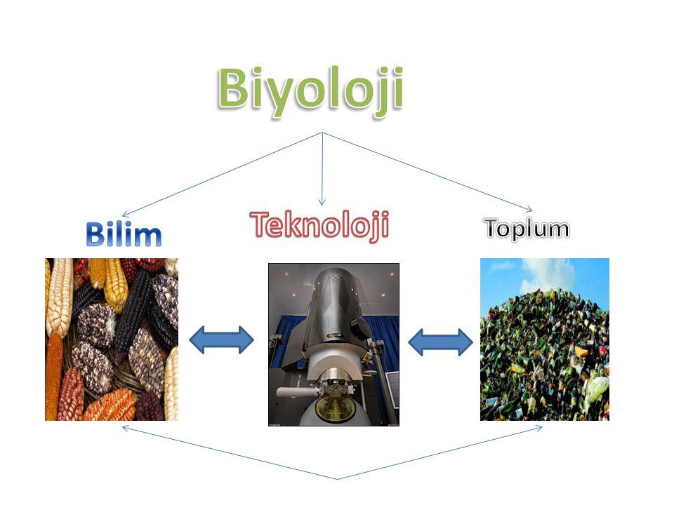 Bilişim Teknolojilerinin Biyoloji Uygulamalarına Getirdiği Yenilikler Bilgisayar teknolojisi ile 3 boyutlu foto ğ raflara ulaşılabilmekte, Özellikle hastalıkların kökenine inilebilmekte, Biyoloji eğitimini somutlaştırmaktadır.