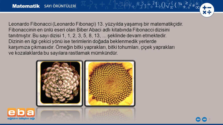 2 Leonardo Fibonacci (Leonardo Fibonaçi) 13. yüzyılda yaşamış bir matematikçidir. Fibonaccinin en ünlü eseri olan Biber Abaci adlı kitabında Fibonacci