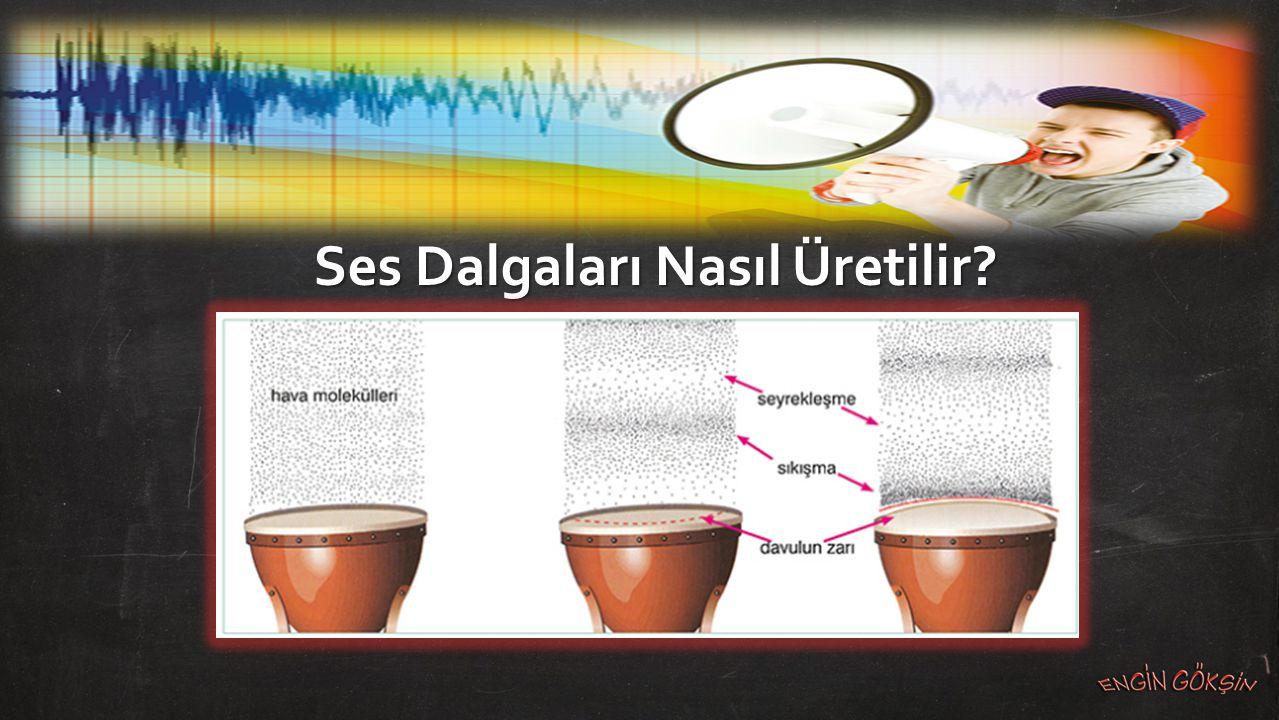 Ses dalgalarının ardışık iki sıkışık (tepe) noktası ya da ardışık iki seyrek (çukur) noktası arasındaki en kısa uzaklık ses dalgasının dalga boyudur.
