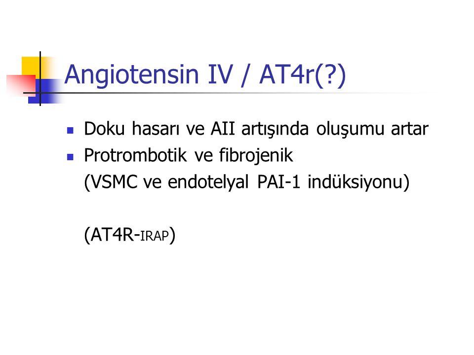 Angiotensin IV / AT4r(?) Doku hasarı ve AII artışında oluşumu artar Protrombotik ve fibrojenik (VSMC ve endotelyal PAI-1 indüksiyonu) (AT4R- IRAP )