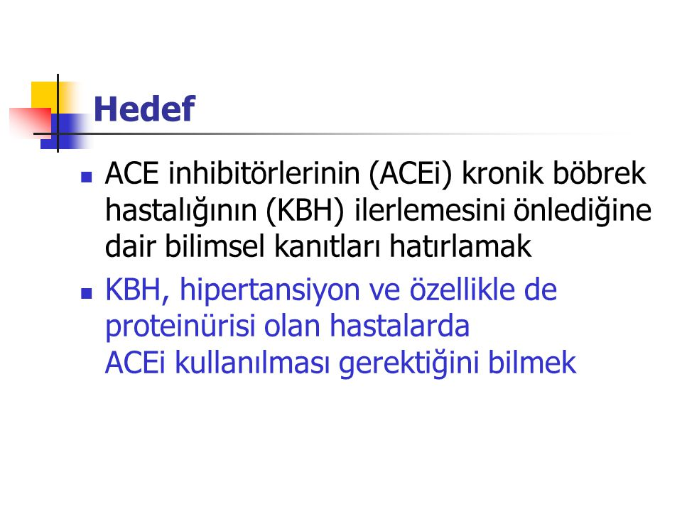 Brenner, Meyer, Hostetter Renal hasar (5/6 nefrektomi) Proteinüri SNGFR Pgc FGS HT ACEi Protein kısıtlaması