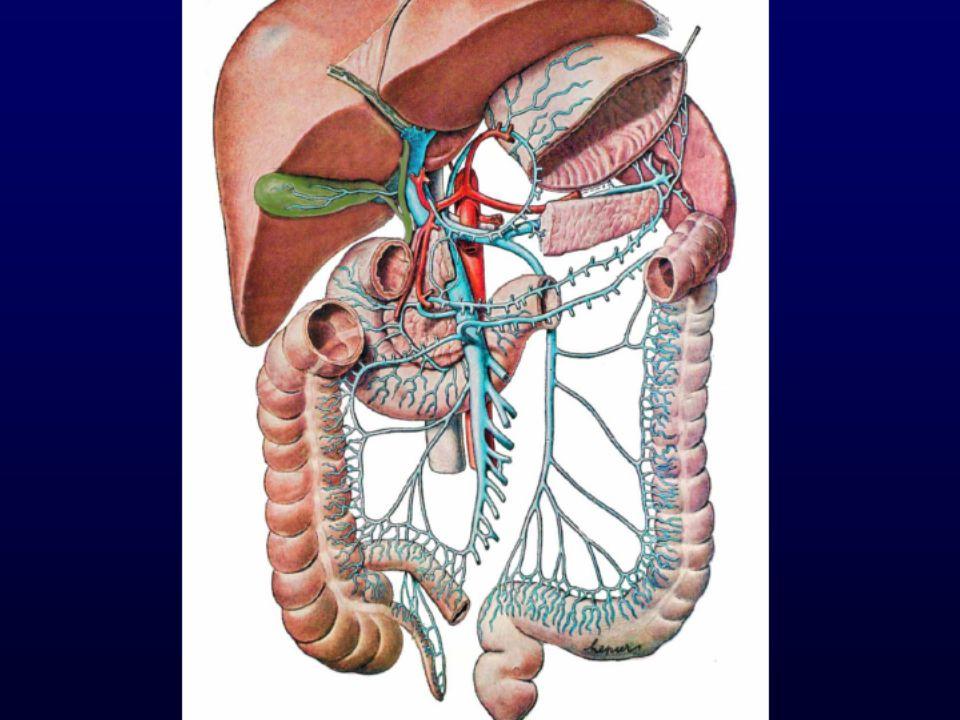 TIPS: Transjugular Intrahepatik Portosistemik Şant: Portal dekompresyonu sağlar Radyolojik olarak hepatik ven ile portal ven arasında birleşme nonselektif bir şanttır Yan yana portokaval şant TIPS başarı oranı %95 endoskopik ve farmakolojik tedavi başarısız ise Karaciğer transplantasyonu bekleyen hastalarda bir köprü