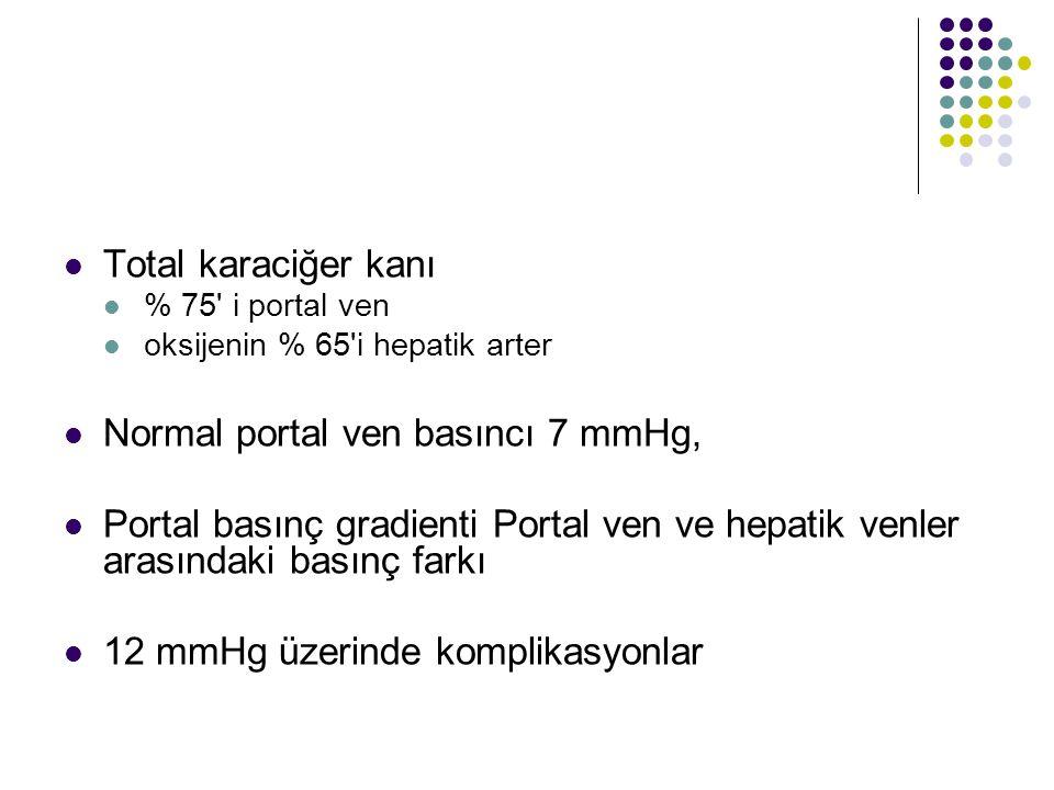 Portal Hipertansiyon genellikle Portal Kan Akımına Artan Dirençle Başlar