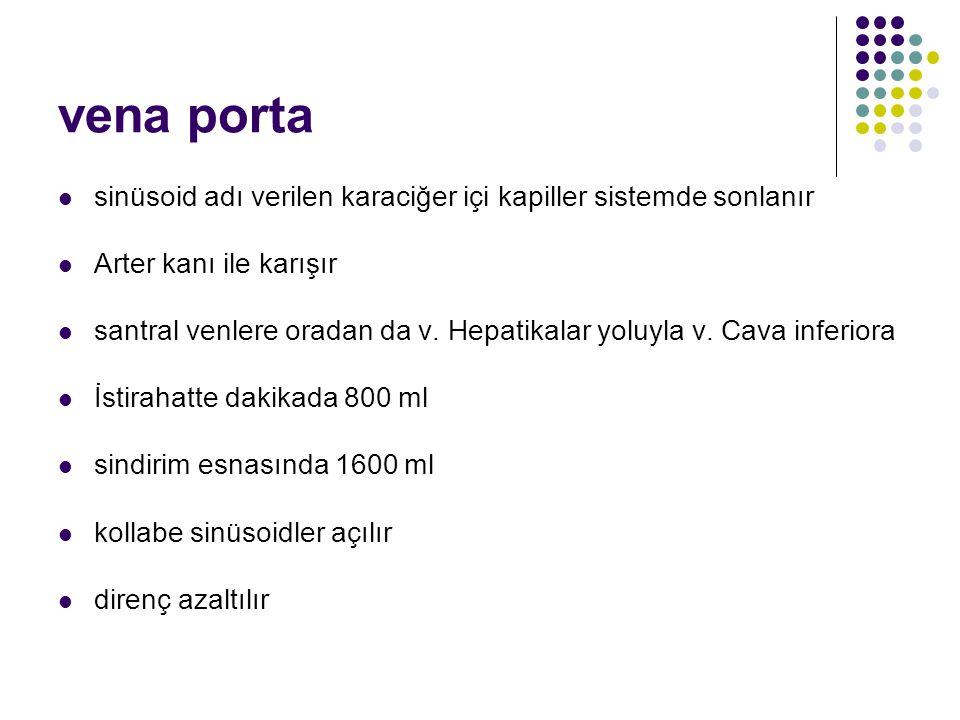 Hepatik Portal HT Nedenleri Presinüzoidal Şistozomiazis Erken primer bilier siroz Kronik aktif hepatit Konjenital hepatik fibrozis Sarkoidoz Toksinler: vinil klorid, arsenik, bakır İdiopatik portal hipertansiyon