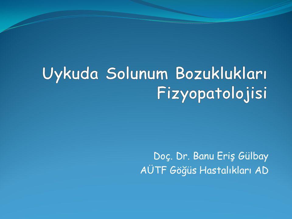Doç. Dr. Banu Eriş Gülbay AÜTF Göğüs Hastalıkları AD