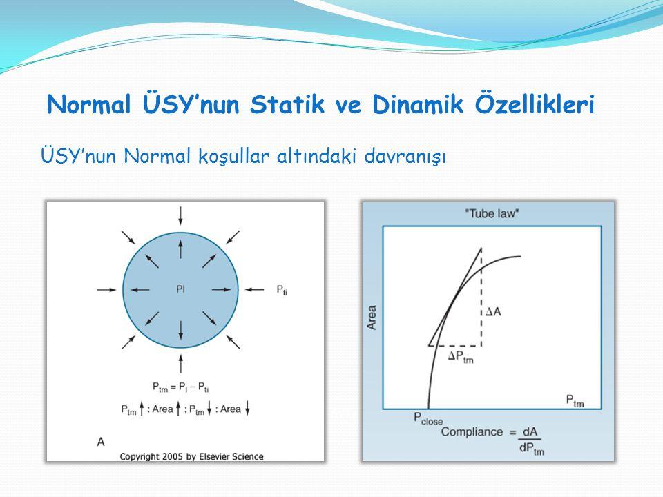 Normal ÜSY'nun Statik ve Dinamik Özellikleri SVT H : SVT V = 1:1 ÜSY'nun Normal koşullar altındaki davranışı