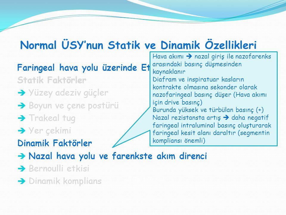Normal ÜSY'nun Statik ve Dinamik Özellikleri SVT H : SVT V = 1:1 Faringeal hava yolu üzerinde Etkili olan Mekanik Faktörler: Statik Faktörler  Yüzey
