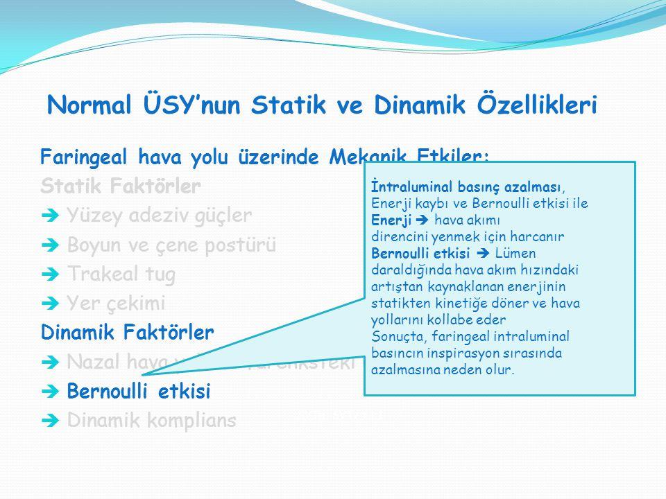 Normal ÜSY'nun Statik ve Dinamik Özellikleri SVT H : SVT V = 1:1 Faringeal hava yolu üzerinde Mekanik Etkiler: Statik Faktörler  Yüzey adeziv güçler