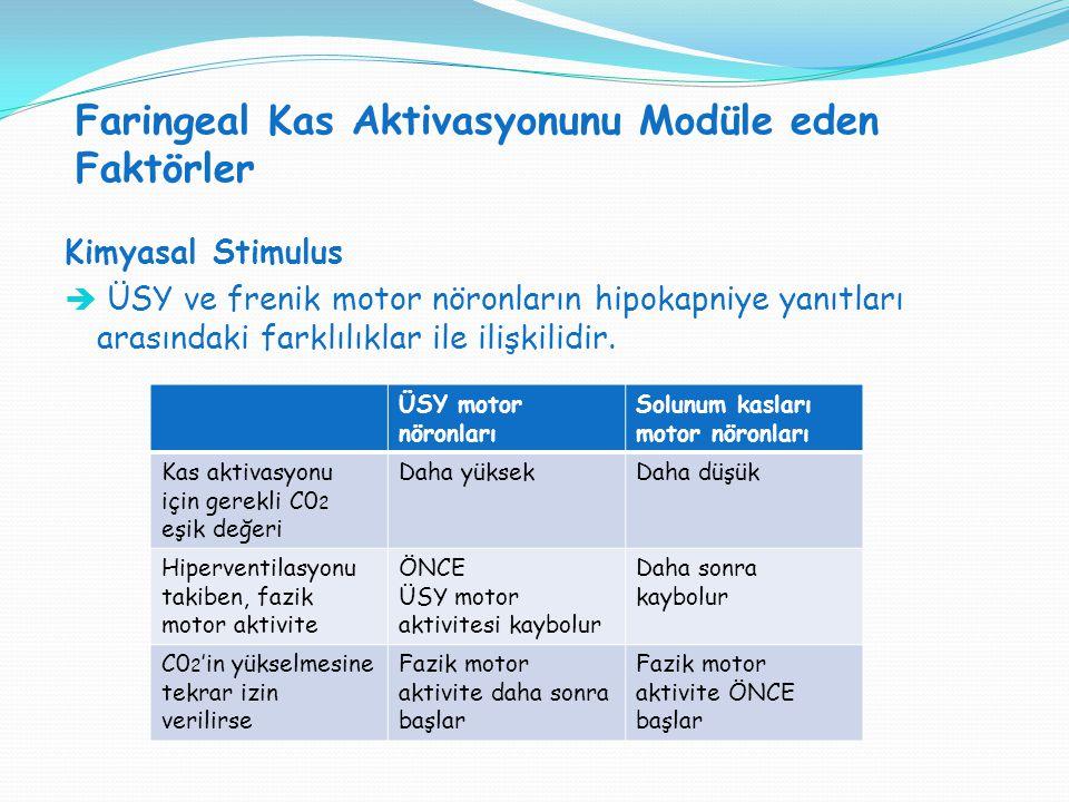 Faringeal Kas Aktivasyonunu Modüle eden Faktörler SVT H : SVT V = 1:1 Kimyasal Stimulus  ÜSY ve frenik motor nöronların hipokapniye yanıtları arasınd
