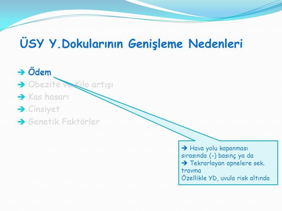 ÜSY Y.Dokularının Genişleme Nedenleri SVT H : SVT V = 1:1  Ödem  Obezite ve Kilo artışı  Kas hasarı  Cinsiyet  Genetik Faktörler  Hava yolu kapa