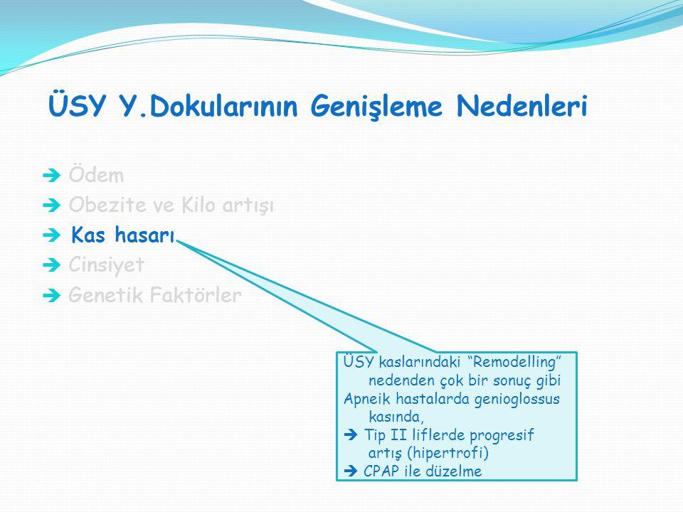 ÜSY Y.Dokularının Genişleme Nedenleri SVT H : SVT V = 1:1  Ödem  Obezite ve Kilo artışı  Kas hasarı  Cinsiyet  Genetik Faktörler ÜSY kaslarındaki
