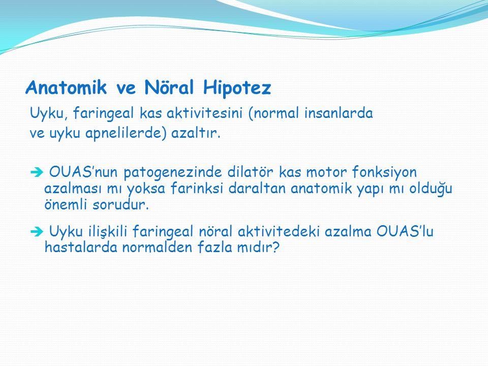Anatomik ve Nöral Hipotez Uyku, faringeal kas aktivitesini (normal insanlarda ve uyku apnelilerde) azaltır.  OUAS'nun patogenezinde dilatör kas motor