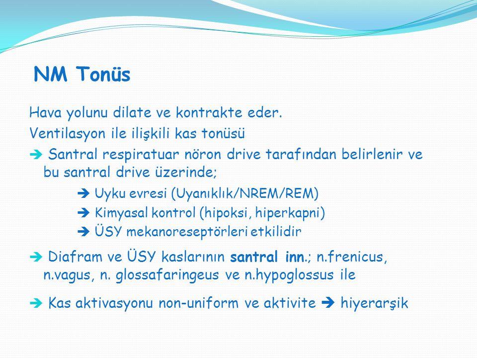 NM Tonüs SVT H : SVT V = 1:1 Hava yolunu dilate ve kontrakte eder. Ventilasyon ile ilişkili kas tonüsü  Santral respiratuar nöron drive tarafından be