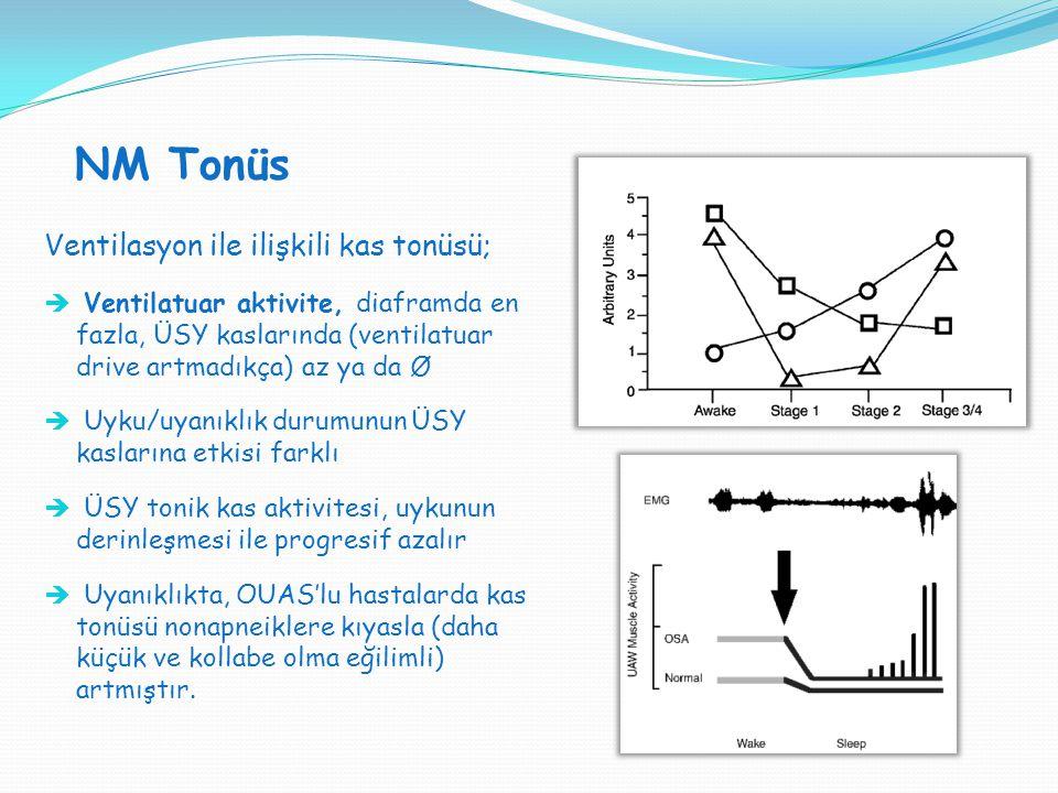 NM Tonüs Ventilasyon ile ilişkili kas tonüsü;  Ventilatuar aktivite, diaframda en fazla, ÜSY kaslarında (ventilatuar drive artmadıkça) az ya da Ø  U