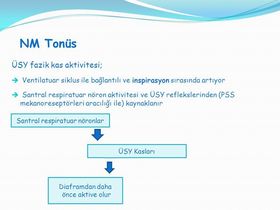 NM Tonüs ÜSY fazik kas aktivitesi;  Ventilatuar siklus ile bağlantılı ve inspirasyon sırasında artıyor  Santral respiratuar nöron aktivitesi ve ÜSY