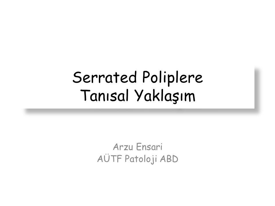 Serrated Poliplere Tanısal Yaklaşım Arzu Ensari AÜTF Patoloji ABD