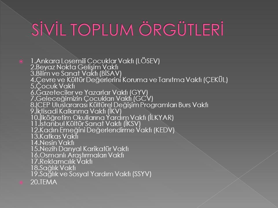  1.Ankara Losemili Cocuklar Vakfı (LÖSEV) 2.Beyaz Nokta Gelişim Vakfı 3.Bilim ve Sanat Vakfı (BİSAV) 4.Çevre ve Kültür Değerlerini Koruma ve Tanıtma