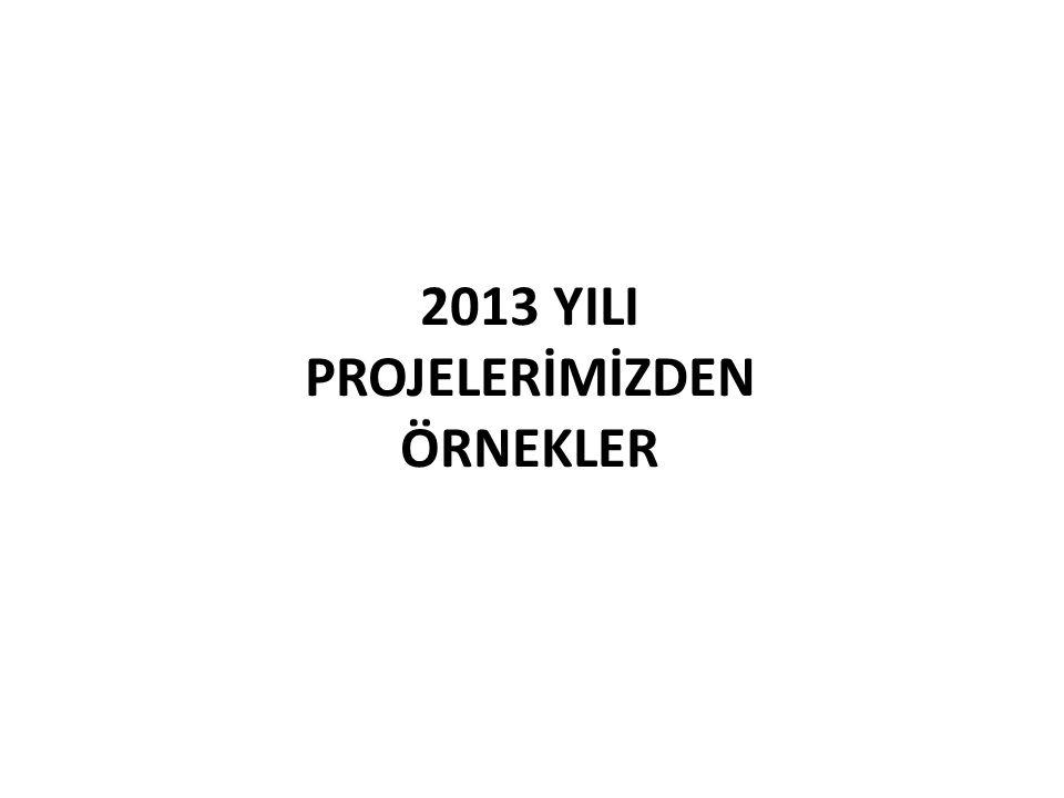 2013 YILI PROJELERİMİZDEN ÖRNEKLER