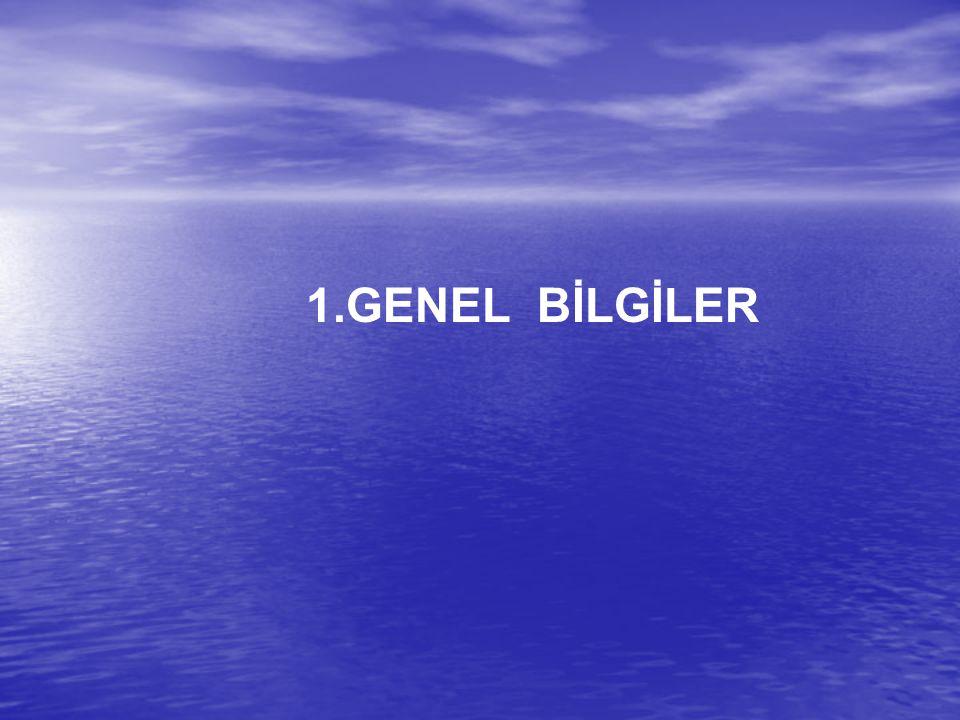 1.GENEL BİLGİLER