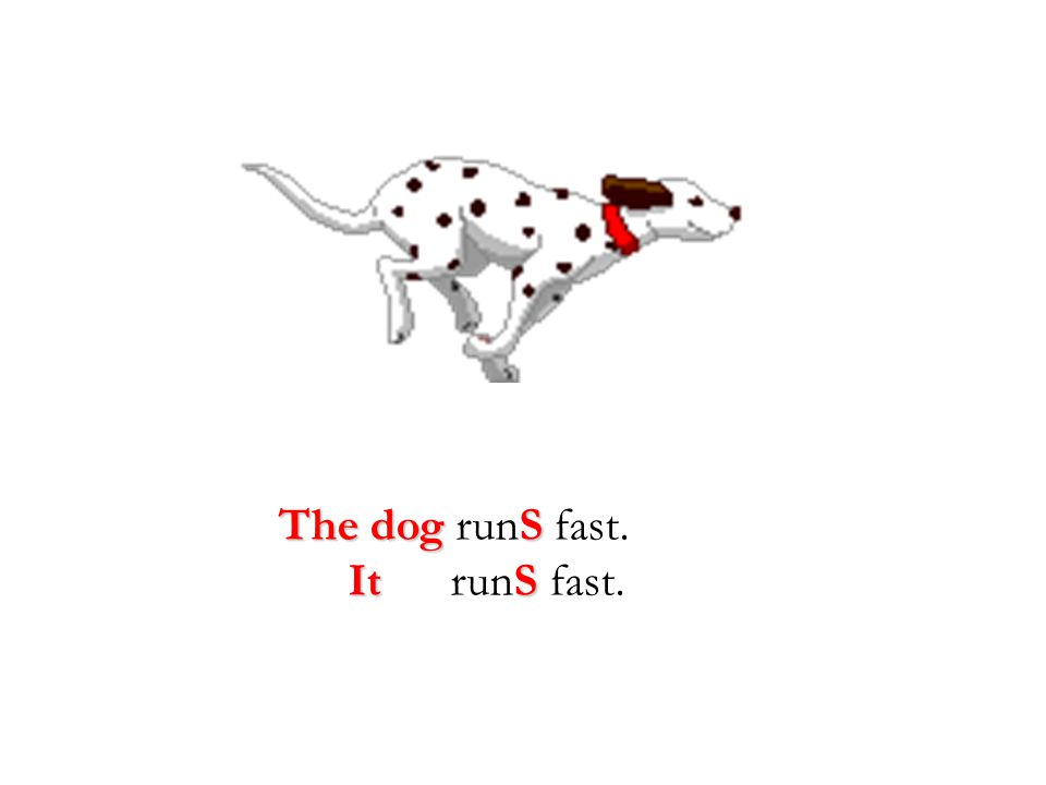 The dogS The dog runS fast. ItS It runS fast.