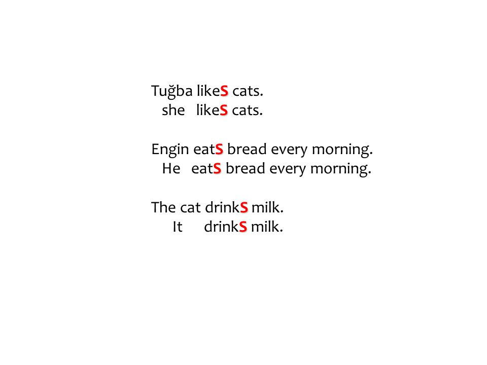 S Tuğba likeS cats. S she likeS cats. S Engin eatS bread every morning. S He eatS bread every morning. S The cat drinkS milk. S It drinkS milk.