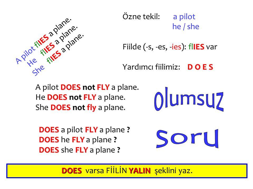 IES A pilot flIES a plane. IES He flIES a plane. IES She flIES a plane. Özne tekil:a pilot he / she Fiilde (-s, -es, -ies): flIES var Yardımcı fiilimi