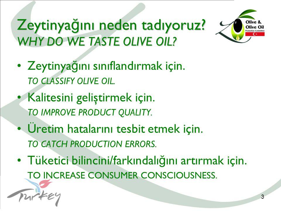 3 Zeytinya ğ ını neden tadıyoruz. WHY DO WE TASTE OLIVE OIL.