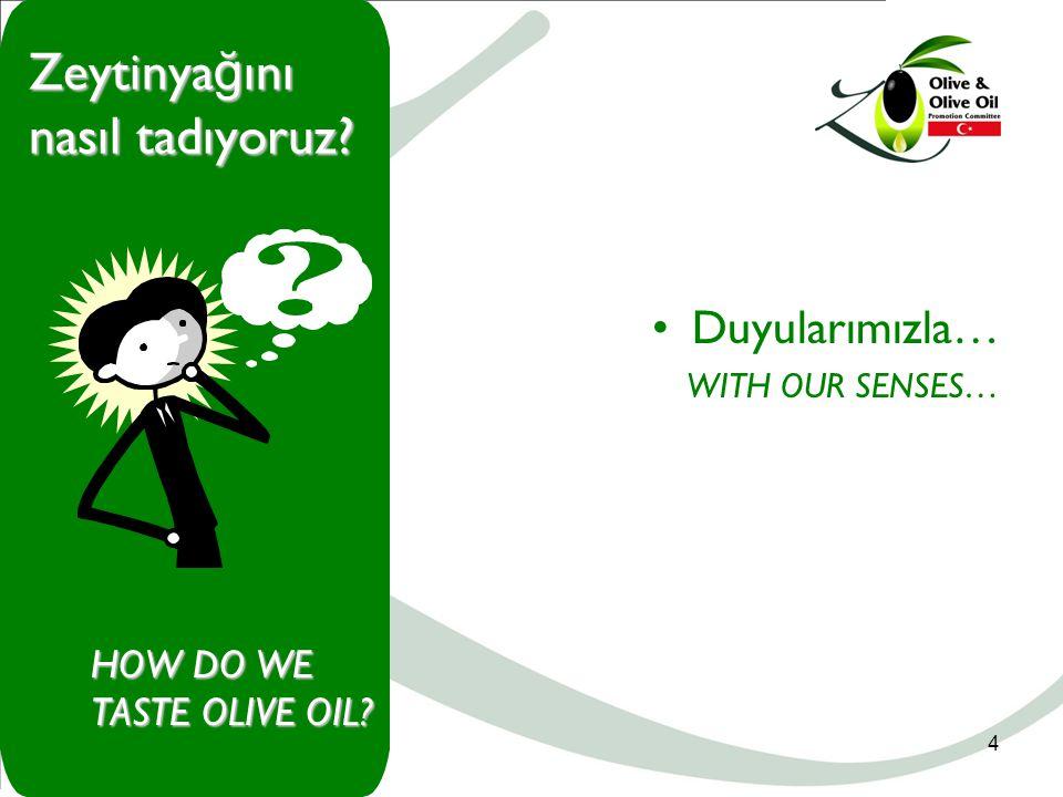 5 Peki hangi duyularımızla.WHICH SENSES DO WE USE FOR OLIVE OIL TASTING?...