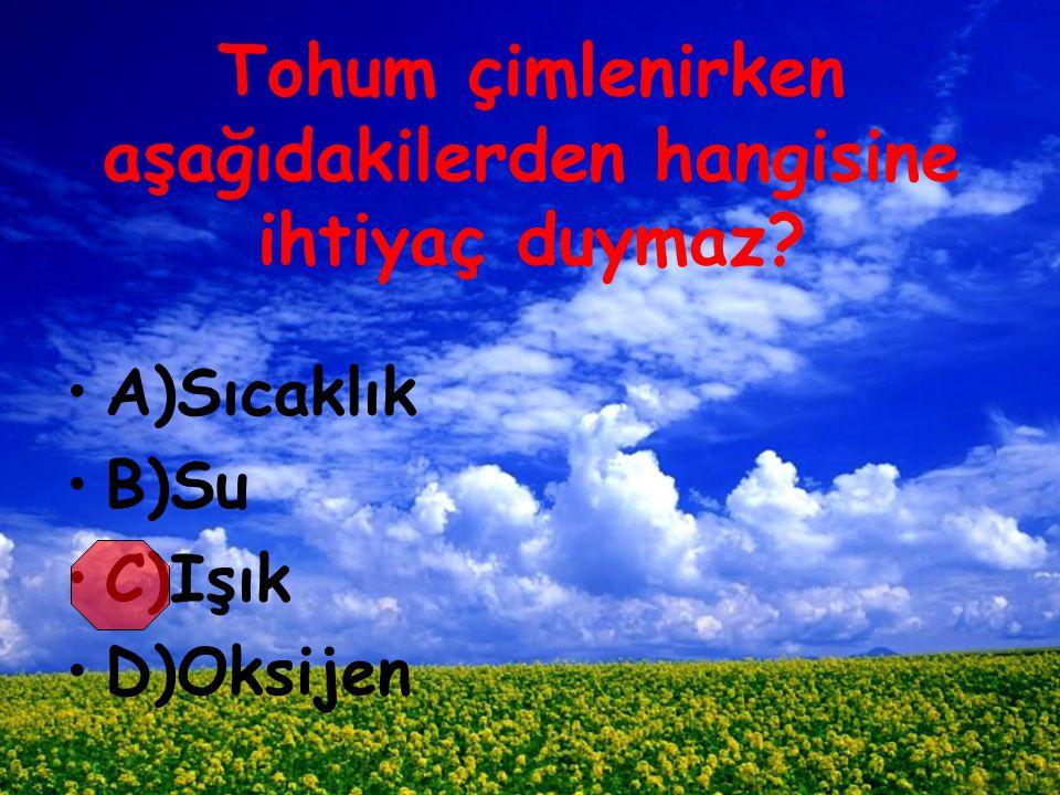 Tohum çimlenirken aşağıdakilerden hangisine ihtiyaç duymaz? A)Sıcaklık B)Su C)Işık D)Oksijen