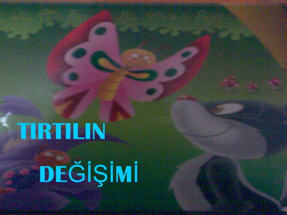 TIRTILIN DE ĞİŞİ M İ