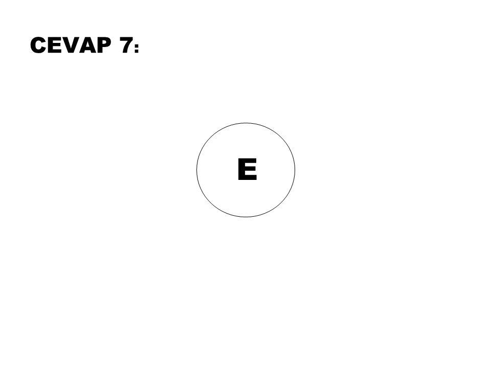 E CEVAP 7 :