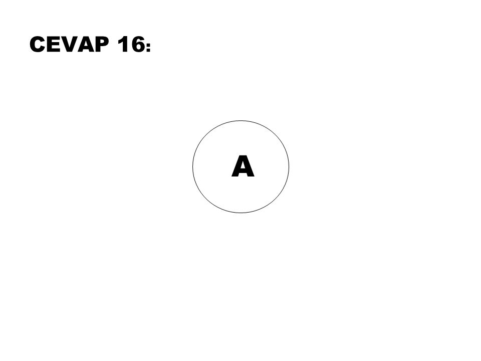A CEVAP 16 :