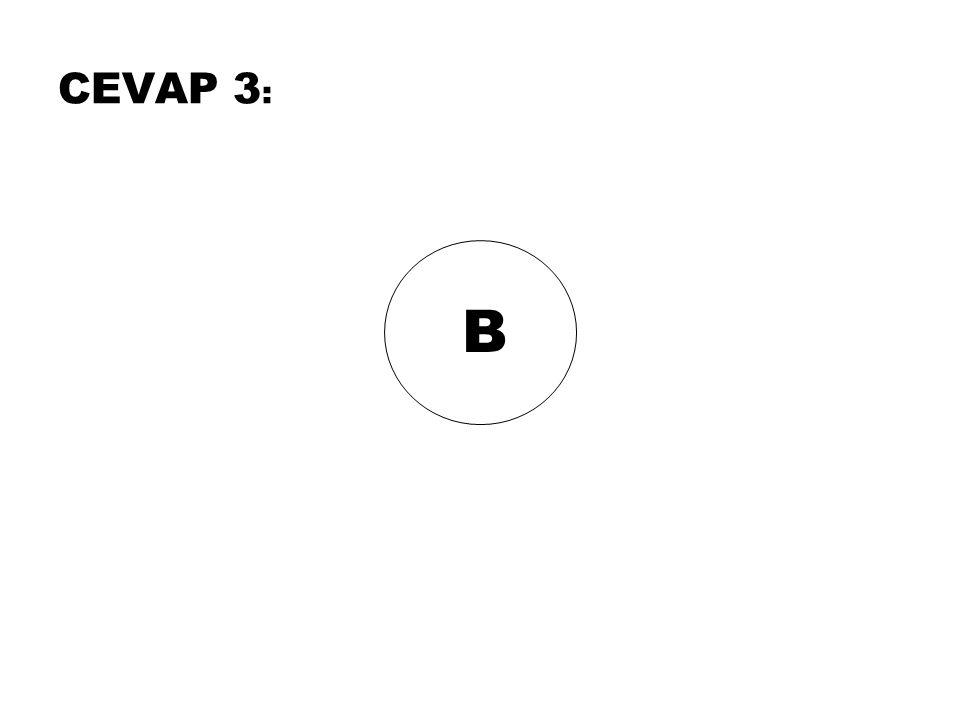 B CEVAP 3 :