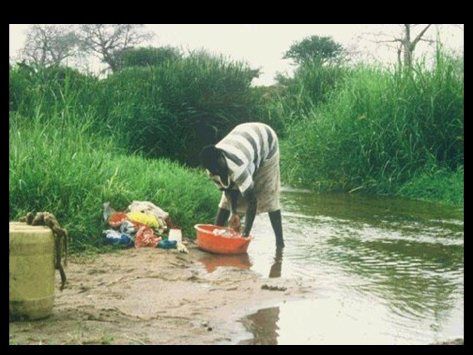 Su ile bulaşan hastalıklar, bulaşma yolları dikkate alınarak dört ana grupta değerlendirilebilir: 1.