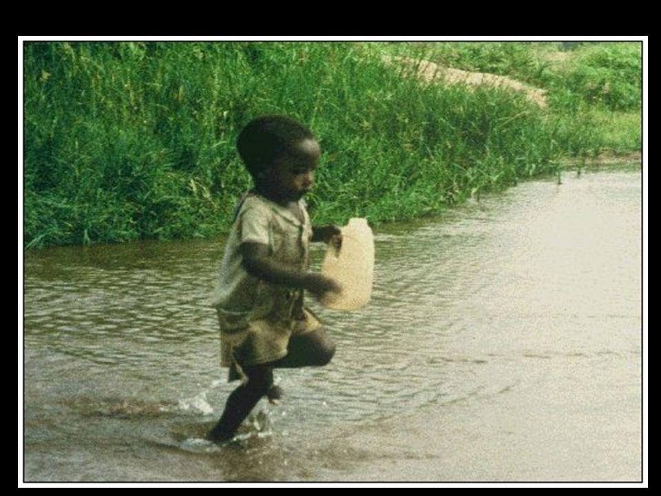 Biz de diyoruz ki: Kendinizi su ve besinle bulaşan hastalıklardan ve de çevrenizi BÜYÜKLERİNİZDEN koruyun.!!.