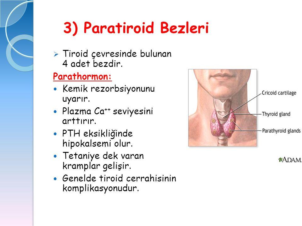 3) Paratiroid Bezleri  Tiroid çevresinde bulunan 4 adet bezdir. Parathormon: Kemik rezorbsiyonunu uyarır. Plazma Ca ++ seviyesini arttırır. PTH eksik
